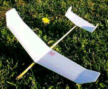双垂直尾翼