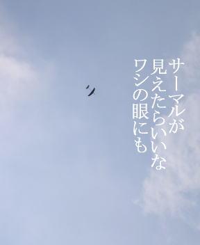 f_05_0818_01
