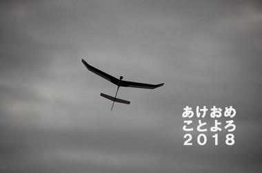 F_17_1231_01_3